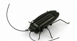 Fun Gadget Office School – eFashion Solar Power Energy Cockroach